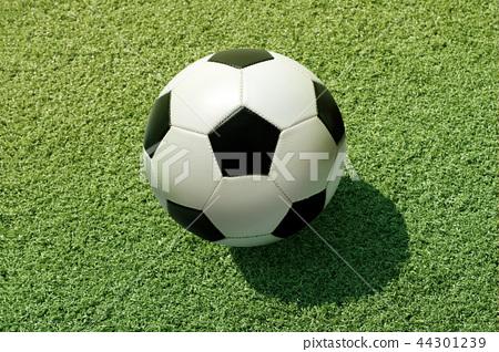 Soccer Football on grass 44301239