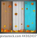 잎, 배경, 벡터 44302437