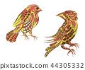 two ethnic bird 44305332