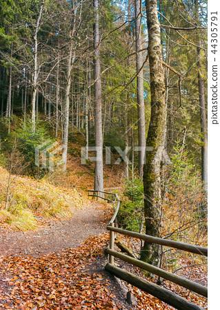 walkway around lake of Synevyr National park 44305791