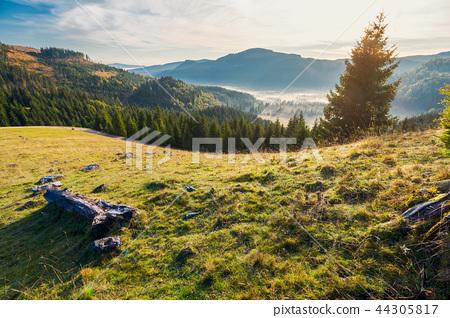 wonderful autumn landscape in mountains at sunrise 44305817