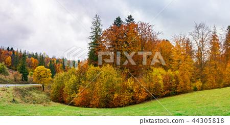 autumn countryside on a rainy overcast  day 44305818