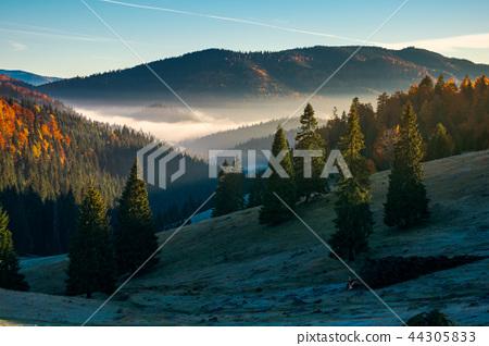 gorgeous autumn landscape in mountains 44305833