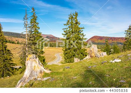 lovely scenery of Apuseni Natural Park of Romania 44305838