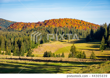 distant mountain in fall colors 44305839