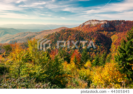 cliff above the forest in fall color 44305845