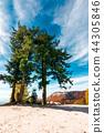 mountain, nature, tree 44305846