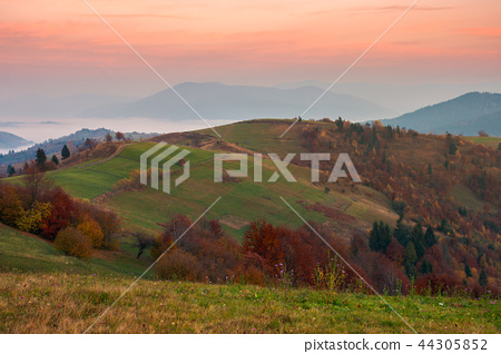 autumn scenery with cloud inversion in the valley 44305852