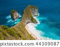Kelingking Beach on Nusa Penida Island, Bali 44309087