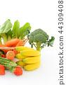 신선한 야채와 과일 44309408