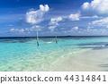 인도양의 아름다운 산호초의 바다 44314841