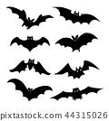 Bat Bird Animal Silhouette Black Vector 44315026