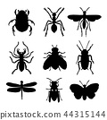 Insect Animal Ant Butterfly Spider Vector 44315144