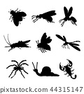 Insect Animal Ant Butterfly Spider Vector 44315147