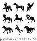 Horse Animal Silhouette Black Vector 44315150