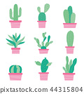 Cactus Icon Element Plants Pot Flower Vector 44315804