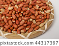 Peeled, opened and roasted peanuts on a white back 44317397