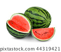 whole and half  watermelon with slice isolated  44319421