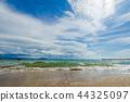 海洋 海 蓝色的水 44325097