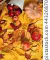 autumn harvest - fruits and vegetables on leaves 44326870