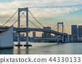 【东京】彩虹桥 44330133