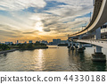 도쿄 도, 레인보우 브릿지, 다리 44330188