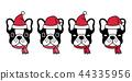 개, 강아지, 벡터 44335956