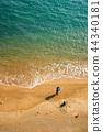 海滩钓鱼 44340181