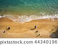 海灘釣魚 44340196