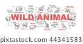 animal vector banner 44341583