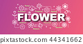 flower vector trendy banner 44341662