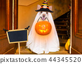 halloween  ghost  dog trick or treat 44345520
