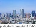 도쿄, 동경, 도시 44347565