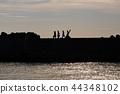 Sunset fisherman at the breakwater 44348102
