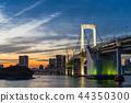 【东京】彩虹桥 44350300