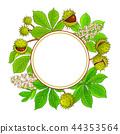 chestnut vector frame 44353564