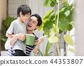 부모와 자식 44353807