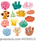 Coral vector sea coralline or exotic cooralreef undersea illustration coralloidal set of natural 44356513