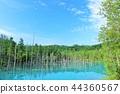 北海道藍天藍色池塘 44360567