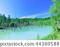 푸른 하늘, 파란 하늘, 여름 44360588