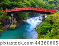 Fresh green Kamihashi World Heritage Site [Nikko, Tochigi Prefecture] 44360605