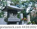 성묘, 묘, 무덤 44361692