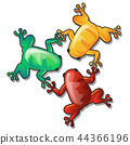 color, colorful, frog 44366196