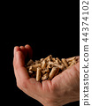 Hand holding heap of wood pellets 44374102