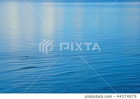 여름 이미지 ~ 바다 10 44374679