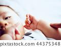 아기의 손 44375348