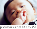 아기의 손 44375351