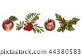 apple, rowan, fruits 44380583