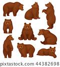 bear, animal, character 44382698