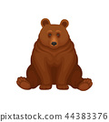 Adorable brown bear sitting isolated on white background. Large forest grizzly. Big mammal animal 44383376
